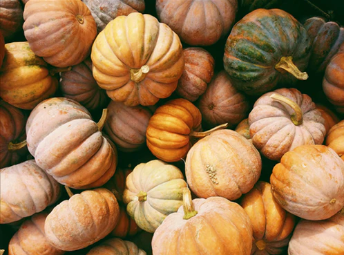 The Greenwich Mummy Blog - Halloween Family Things to Do